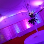 LED Mood Lighting - LED Uplighting From County Durham Wedding DJ